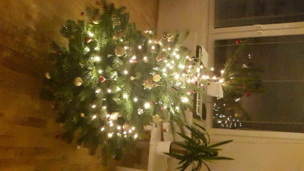 Moje střípky Vánoc 2015