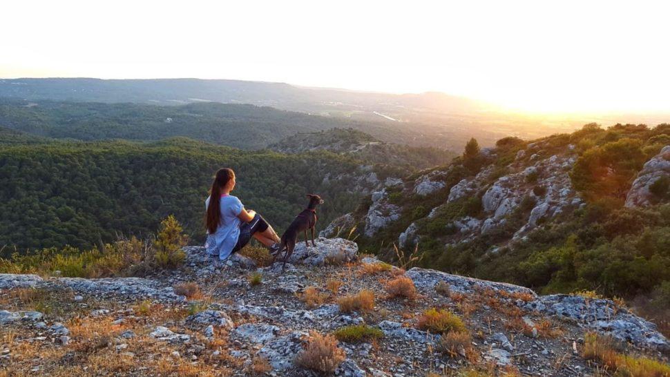 Markéta Králová apes - Provence